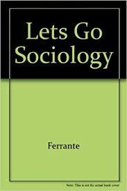 com let s go sociology travels on the internet com let s go sociology travels on the internet 9780534531096 joan ferrante wallace joan ferrante angela vaughn books