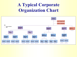 Creating A Flexible Organization Ppt Video Online Download