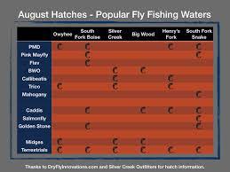 August Hatch Chart Popular Idaho Rivers Community Fishing