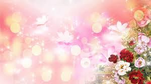 Flower Light Scene Abstract Wedding Background 07 Stock Video