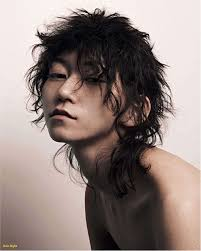 Long Asian Hairstyles Male 58 Beautiful Male Asian Hair Styles S