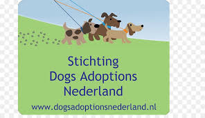 dog walking advertising dog walking advertising business cards company pet adoption png
