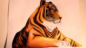 Comment Dessiner Un Tigre Youtube