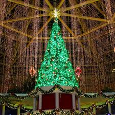 Christmas Tree Lights Flasher Unit Low Energy 300leds 220v Eu Curtain Icicle String Lights Christmas Fairy Lights Flasher Led For Party String Light Buy Waterproof Outdoor