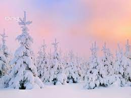 Bing Winter Wallpapers - Top Free Bing ...