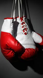 boxing gloves red white boxing vertical