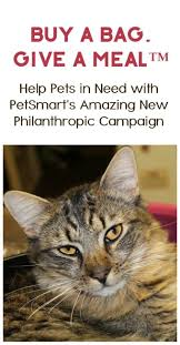 PetSmart Celebrates 30 Years With Their Biggest Philanthropic Campaign  Ever. Pet CraftCat ...