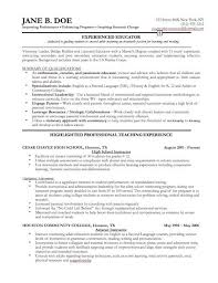 Free Professional Resume Examples Adorable Free Professional Resume Examples] 48 Images Business Resume