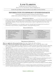 Exelent Fmcg Sales Manager Resume Format Adornment Documentation