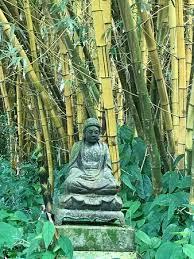 allerton garden reviews. allerton garden: siddhartha in the bamboo grove garden reviews
