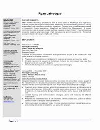 Public Health Resume Sample Seo Strategist Sample Resume Awesome Public Health Nutrition 41