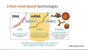 ทีมวิจัยย้ำ 'ไทย' อยู่ในขั้นพบวิธีผลิต 'วัคซีนโควิด-19' เลือกแบบ DNA / nRNA