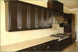 kitchen cabinet door handles with backplate