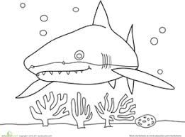 Small Picture Shark Coloring Pages Printables Educationcom