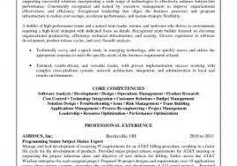 Junior Business Analyst Resume Luxury Business Analyst Resume Sample