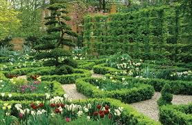 Small Picture Glorious Hedges Gallery Garden Design