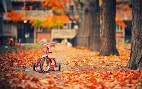 garden furniture in autumn autumn furniture