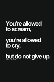 Funny Quotes About Not Giving Up