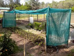 garden shade cloth. Brilliant Shade All Posts Tagged Garden Shade Cloth Amazon In Garden Shade Cloth C