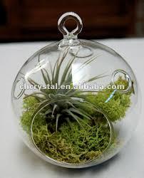 hanging glass terrarium string , air plant terrarium hollow globe