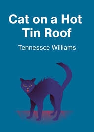 writing introductions for cat on a hot tin roof essay cat on a hot tin roof essay