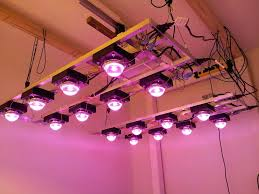 show diy led grow light cob 2016 full spectrum with lens