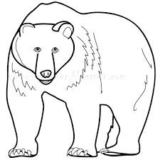 Small Picture Grizzly Bear clipart coloring page Pencil and in color grizzly