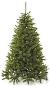 Купить <b>Сосна искусственная Triumph</b> Tree <b>Сказочная</b> 215 см. по ...