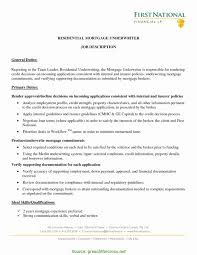 Underwriter Resume Examples Insurance Example Accounting Manager S