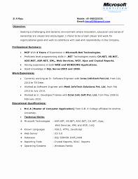 Resume Skills Examples Best Of Brilliant Ideas Summary Resume 63