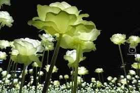 glow in the dark romantic rose garden