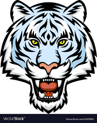 white tiger. Delighful Tiger White Tiger Head Logo Vector Image And Tiger