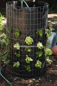 lettuce tower vertical vegetable garden idea