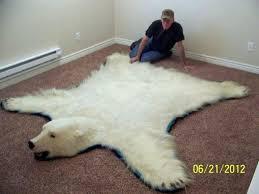 polar bear rug epic polar bear rug with additional inspiration with polar bear rug polar bear polar bear rug