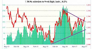 3 Cot Charts For Commodities Traders August 18 Invest