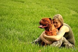 Resultado de imagen para собака Dogue de Bordeaux объятие