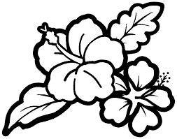 ハイビスカスのフリー素材イラストカラー白黒 保育園幼稚園の