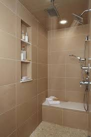 Indian Bathroom Design For fine Ideas About Bathroom Designs India On Style