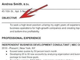 Do You Need Objective On Resume Objective To Put On A Resume Skinalluremedspa Com