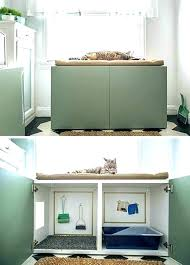 cat box cabinet cat box cabinet litter ideas for hiding your kitty valentine 8 hid cat box cabinet cat litter