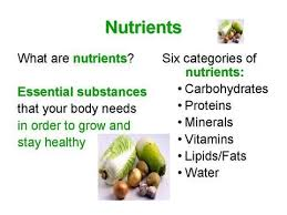 Protein Vitamins Minerals Fats And Carbohydrates Chart Nutrient Charts For Minerals Vitamins Fruits Vegetables