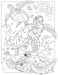 Small Picture Leatherback Sea Turtle coloring page Animals Town animals