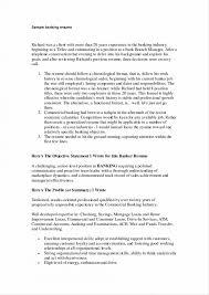 Beautiful Banker Profile Summary Resume Ensign Documentation