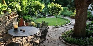 Good Trees For Backyard