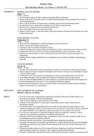 Analyst Budget Resume Samples Velvet Jobs