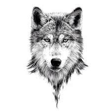 Pin Uživatele Jan Dambor Na Nástěnce Tatto Tetování Vlka Tetování
