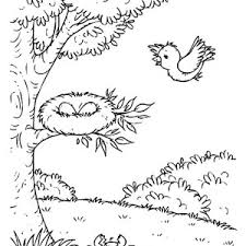 Small Picture Baby Birds In Nest Coloring Pages Coloring Pages