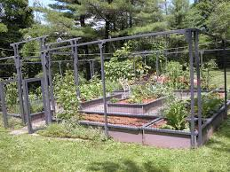 modern backyard vegetable garden house design with high wire garden fence with gate and small round table with chairs in the middle