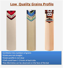 Complete Guide On Cricket Bat Grains Concepts Khelmart Org