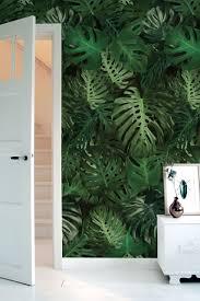 Behang Met Tropisch Patroon Van Groene Monstera Bladeren Decoreer